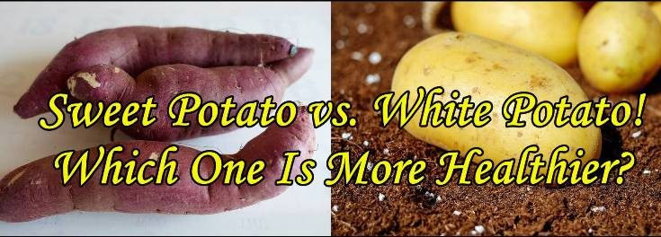 sweet potato vs. white potato